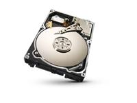 Slika Trdi disk Seagate Enterprise (1TB, 6Gb/s, 128MB, SATA3) ST1000NM0033