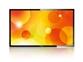 "Velik 55"" Signage monitor Philips 55BDL5530QL"