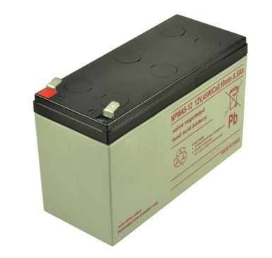 NPW45-12 Valve Regulated Lead Acid Battery
