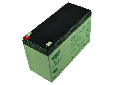 REW45-12 Valve Regulated Lead Acid Battery