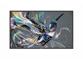 "Profesionalni LED zaslon Philips 50BDL3510Q/00 (50"", 4K UHD)"