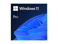 Microsoft Windows 11 Professional 64-bit SLO DSP (FQC-10551)